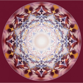 Het kristallijnen web, Pieter Torensma