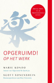 Opgeruimd op het werk / Marie Kondo