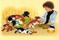Jonge hondjes, Gerda Muller