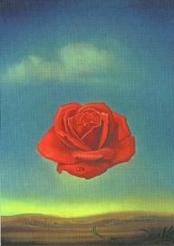 Meditatieve roos, Salvador Dali