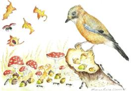 Gaai in de herfst, Margo Heine Slezak
