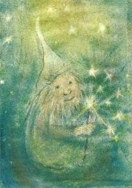 Dwerg met sterren, Sabine Reinink
