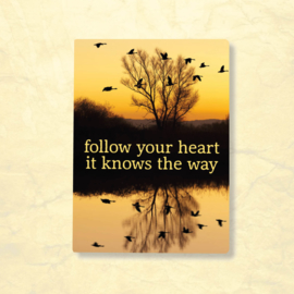 Magneet Follow your heart it knows the way