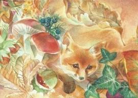 De kleine vos, Marie Laure Viriot