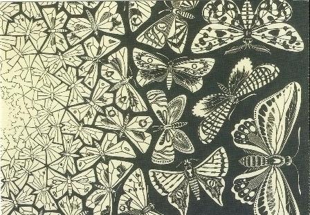 Vlinders, houtgravure, M.C. Escher