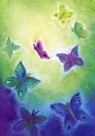 De vlinders, Baukje Exler