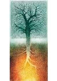 Roots, Yolanda Eveleens