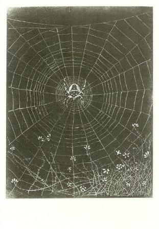 Kruisspin in zijn web, Jan Mankes