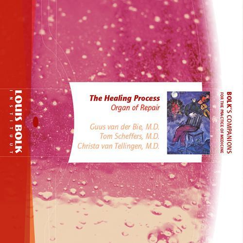 The Healing Process / Guus van der Bie, Tom Scheffers, Christina van Tellingen