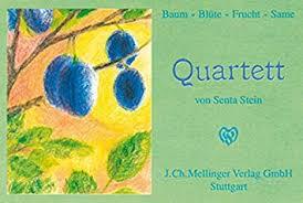 Quartett (von Senta Stein)