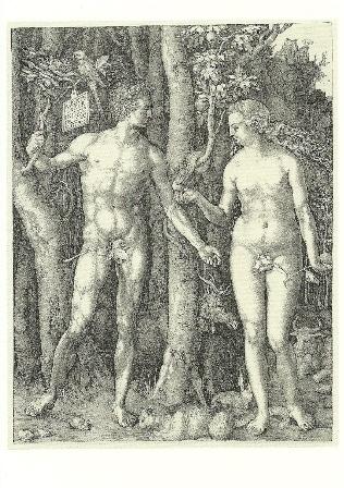 Adam en Eva, Albrecht Dürer