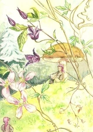 Ontmoeting van dwergen, Anne Wenzel