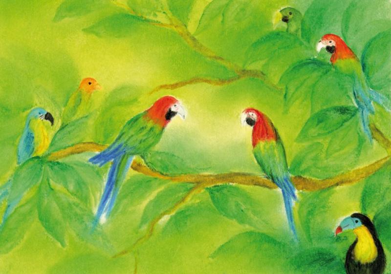 De papegaai, Baukje Exler