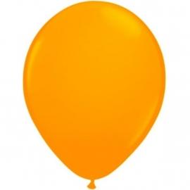 Ballonnen Neon