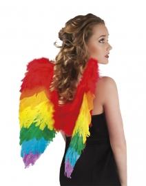 Vleugels regenboog 50x50 cm