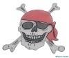 Piraten hoofd deco