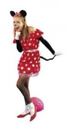 Mini Mouse jurkje