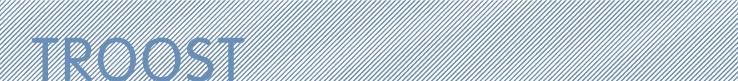 webshopitemtroost.jpg