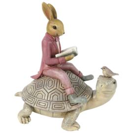 Decoratie Bunny op schildpad