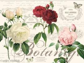 Kunststof placemats (4) bloemen Botanic