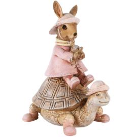 Bunny op schildpad
