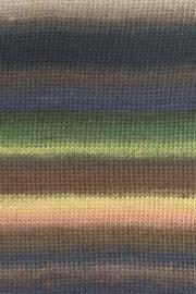 LANG Yarns Mille Colori Baby - 0067 Bruin-Groen-Geel