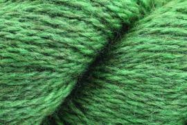 Rowan - Moordale - 13 Eucalyptus