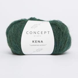 Katia Concept - Kena 81 Flessengroen