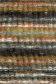 LANG Yarns Dipinto - 0068 Bruin Groen