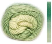 LANG Yarns - Jawoll Twin Socks 0508 Groen