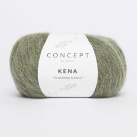 Katia Concept - Kena 80 Kaki