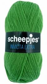 Scheepjes Invicta Extra - 1466 Groen