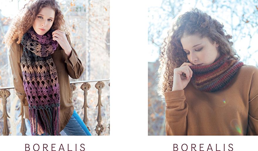 Leaflet_borealis_18-19-1.jpg
