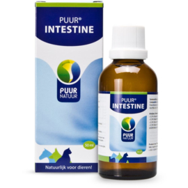 Puur Darm / Intestine 50 ml