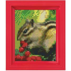 Geschenkverpakking Eekhoorn