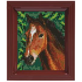 Geschenkverpakking Bruin paard