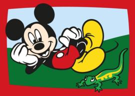 Nr. 329 Mickey