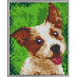 Pixel XL Terriër