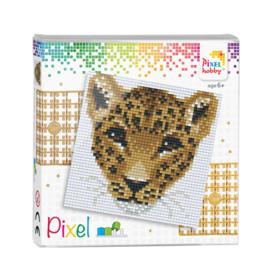 Pixel set Luipaard