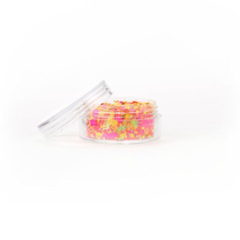 Chunky glitter fluoresent mix (8ml)
