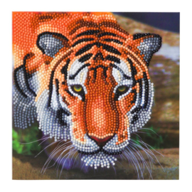 Crystal Art card Tiger