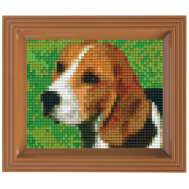 Geschenkverpakking Beagle
