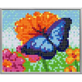 Pixel XL Blauwe vlinder