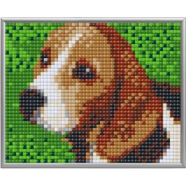 Pixel XL Beagle