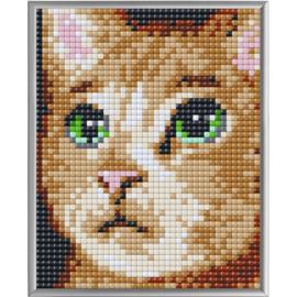 Pixel XL Kater