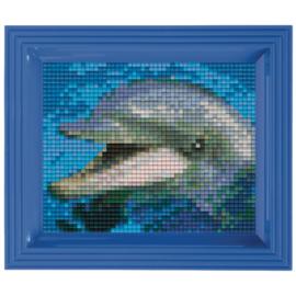 Geschenkverpakking Dolfijn