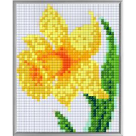 Pixel XL Narcis