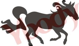21700 Horse Running