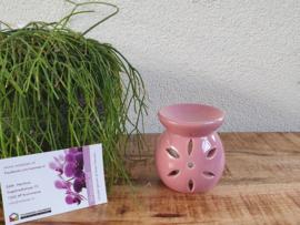 Mini Brander Uitgesneden Bloem Roze