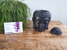 Zwarte Buddhahoofd Brander
